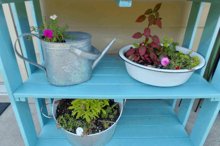 Plant shelf makeover