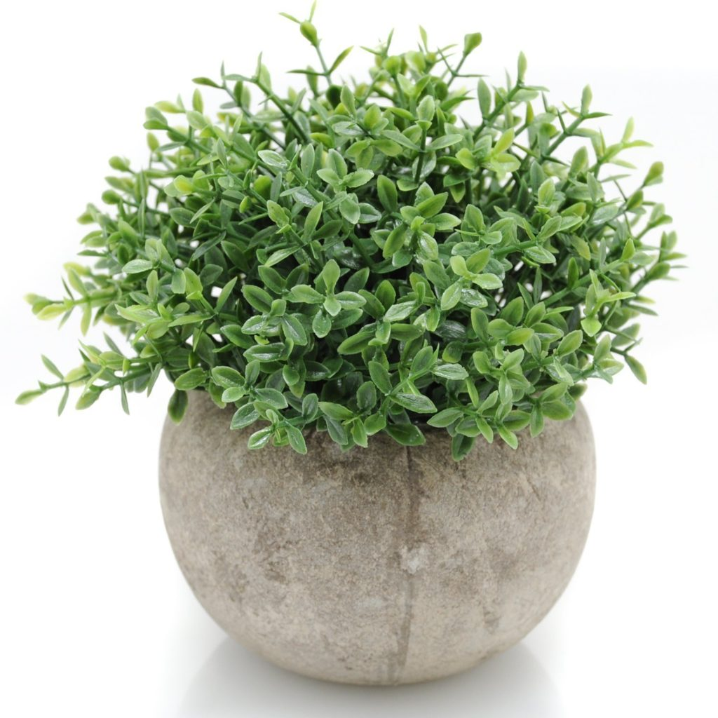 top 10 tuesday fall decor faux concrete planter and plant