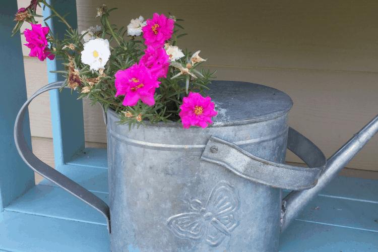 7 Easy DIY Farmhouse Style Planters