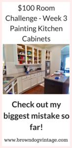 Week 3 Kitchen cabinet makeover
