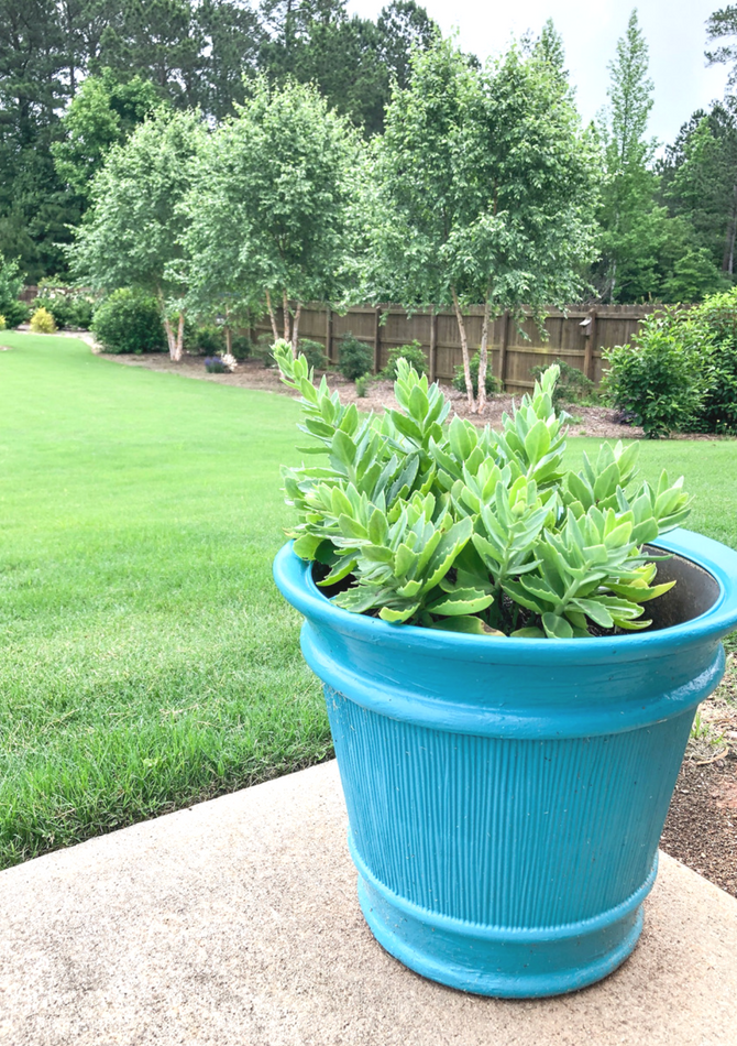 Outdoor planter makeovers! Pot painting ideas with DecoArt Paint