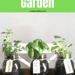 DIY Indoor Herb Garden - An easy gardening DIY project you can do in no time for fresh herbs all year #createandfind #herbgarden #diyprojects #diyherbgarden