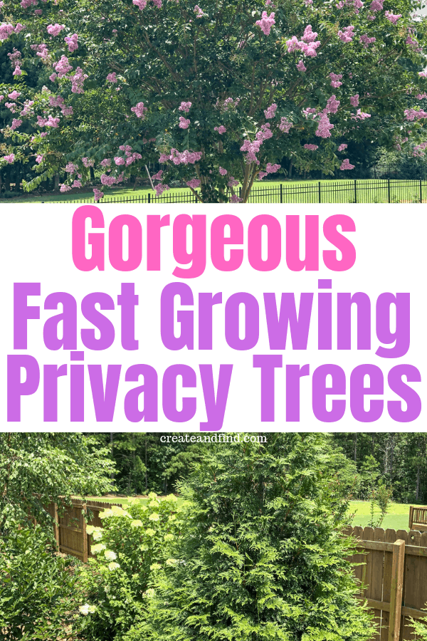 Fast Growing Privacy Trees