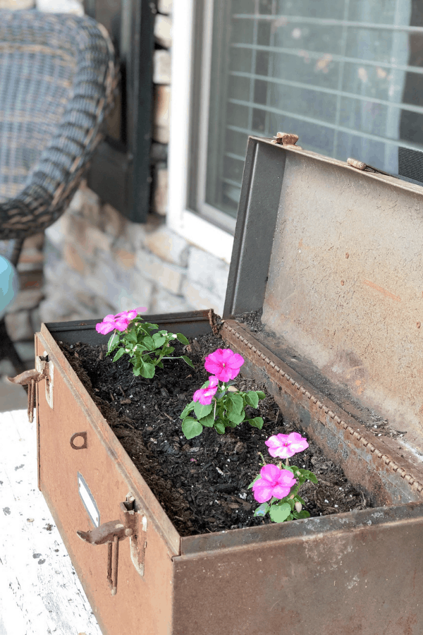 Vintage toolbox used for a planter on a summer front porch