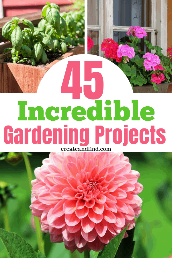 45 garden project ideas