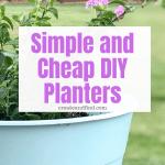 DIY Decorative Planters