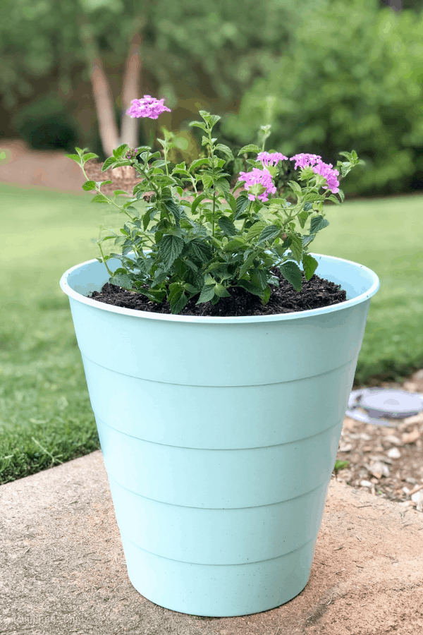 Decorative planters made from IKEA trash cans