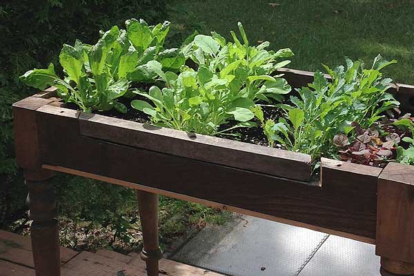 How to Make a Lettuce Table from Cast Off Furniture