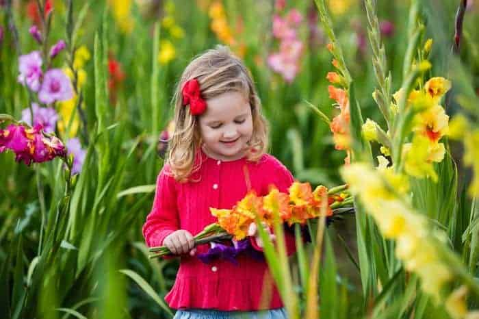 Growing An Edible Flower Garden For Kids