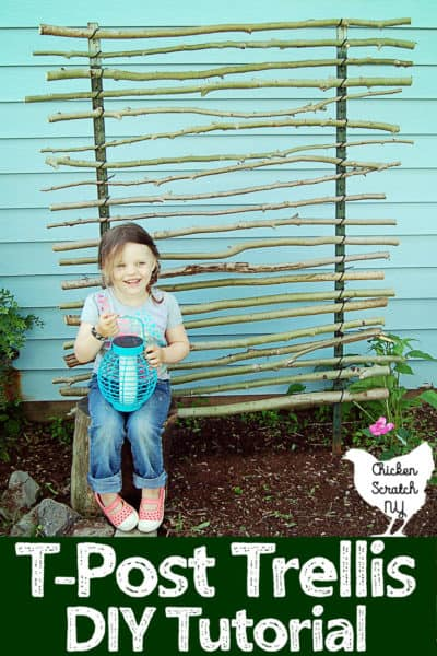 Cheap DIY Garden Trellis