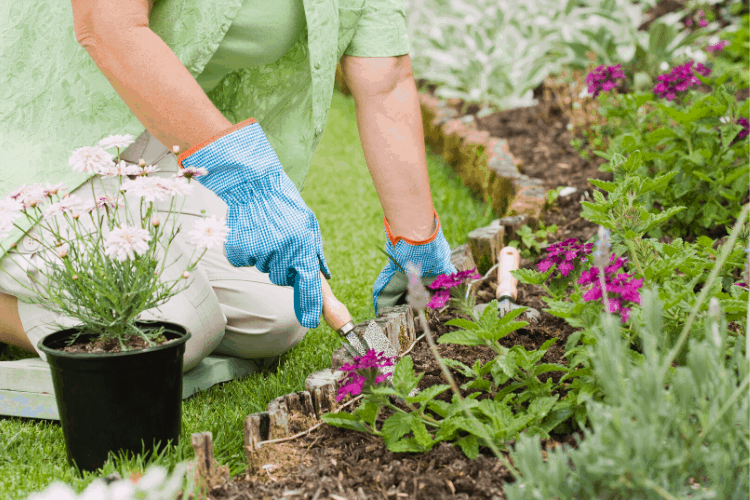Gardening Materials to Make Planting and Growing Easier