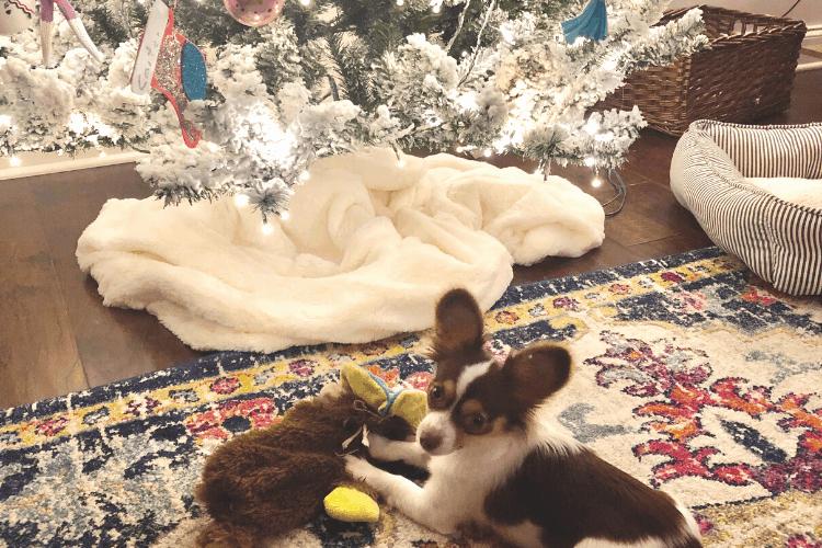 colorful christmas decor - rug